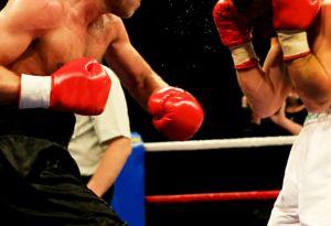 Coaching Boxer